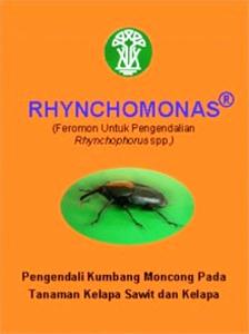 Rhynchomonas